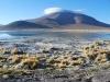vulkanlandschaft5