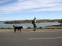 Pampa - Patagonien